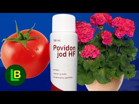 Dodajte kap joda u vodu i zalivajte muškatle i paradajz. Rezultati su iznenađujući