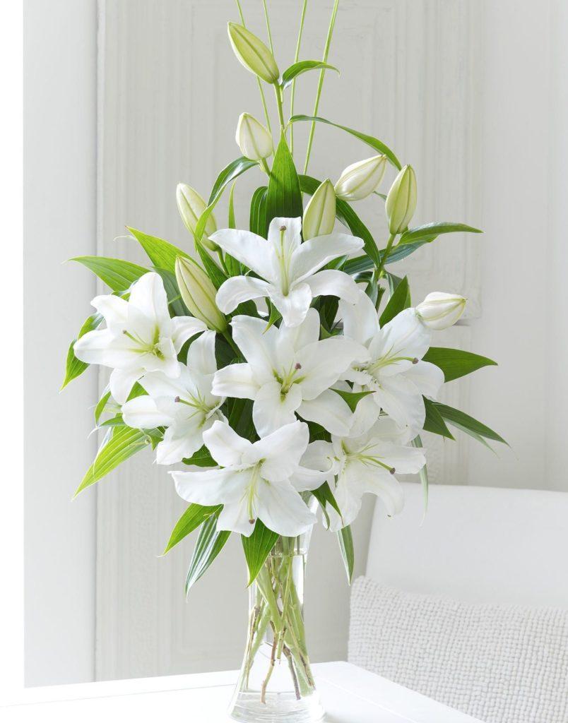 beli ljiljani kao cvetna dekoracija i aranžman za poslovne prostore