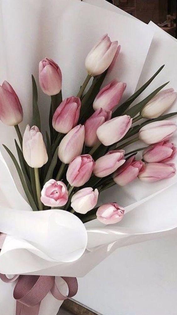 buket od roze lala beograd