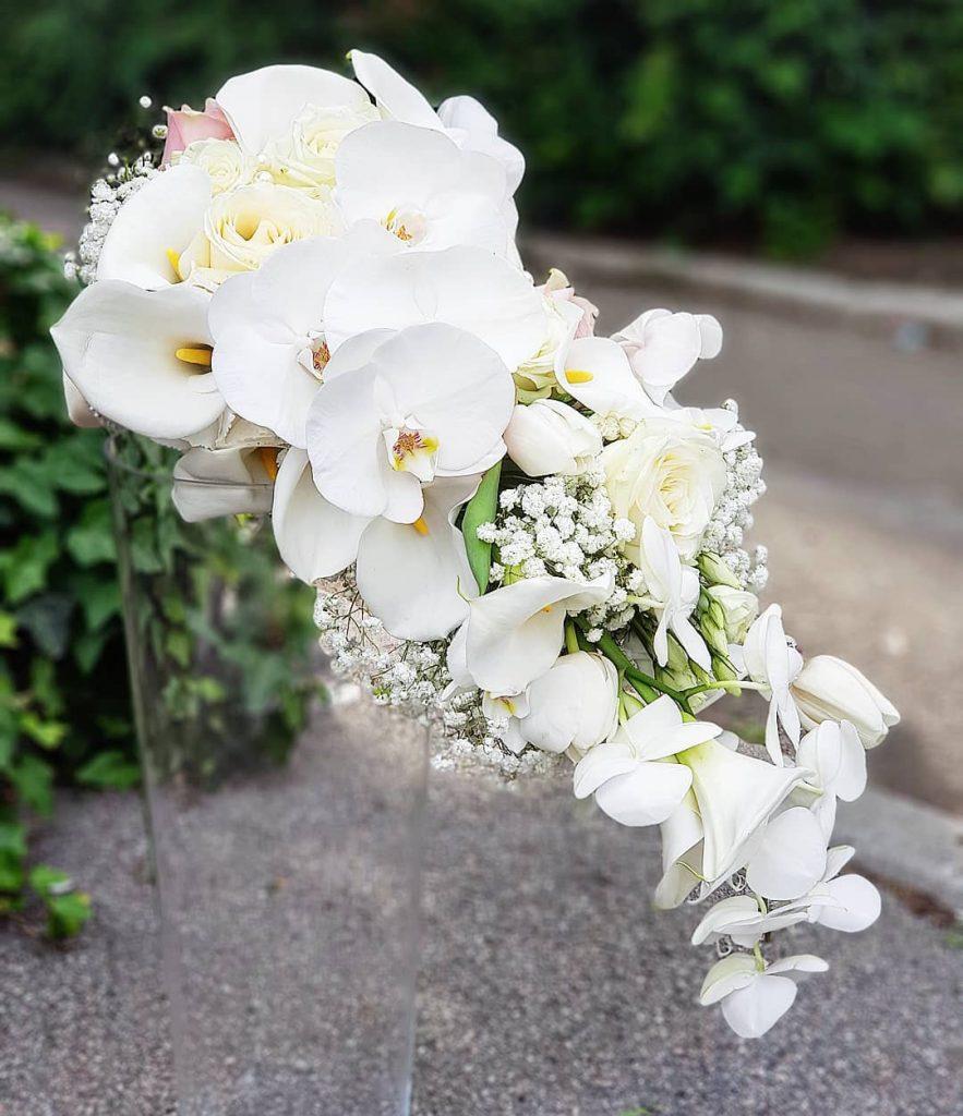 cvetni aranzman sa orhidejama u cvecari elite, zemun, beograd