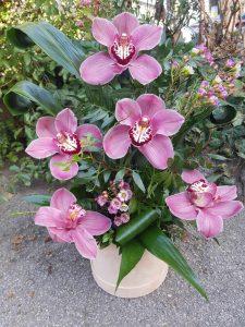 cvetni aranžman od orhideja