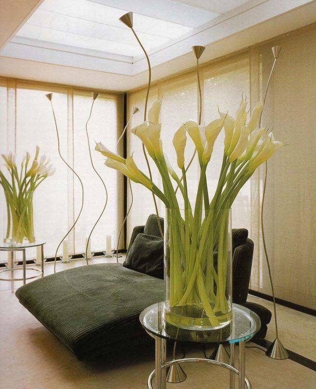 Bele-tulipe1.2